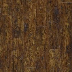 Eastern Hickory 57885