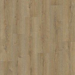 Тренди Чьянти 594 (4м.)