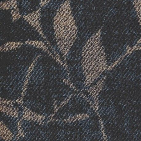 Louvinia 73
