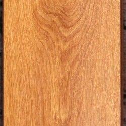 Grun Wald 24210 Elegant Oak
