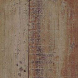 Glory Driftwood 464m