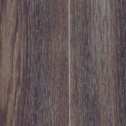 Stars Columbian Oak 664d