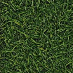 Bingo Style Grass 25