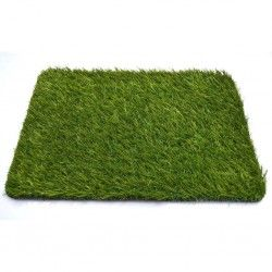 Искусственная трава Amsterdam 25мм (2м.)