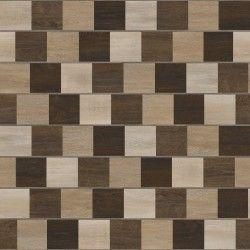 Illusion Chess 1