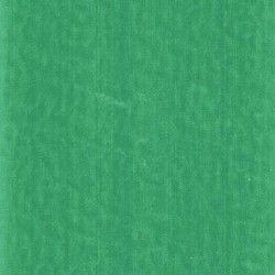 Omnisports Speed field green